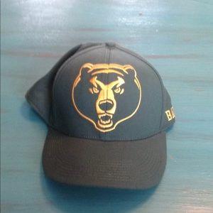 Baylor Bears cap